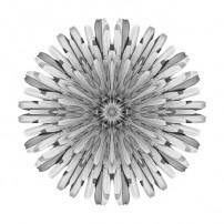 Dandelion V (b&w, white)