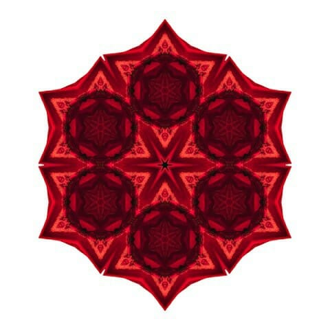Image Flower Mandala