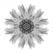 Pale Yellow Gerbera Daisy I (b&w, white)