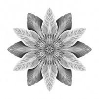 White Clematis I (b&w, white)